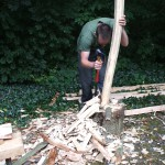 Removing the bark and softwood